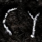 Koniec Pola – CY