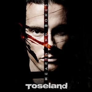 Toseland – HeartsAndBones