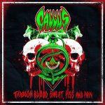 Bloodstock interview - Callus
