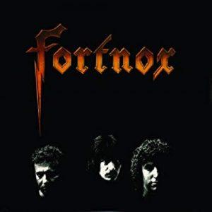 fortnox500