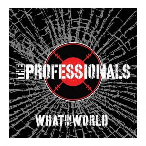 what-in-the-world---the-professionals